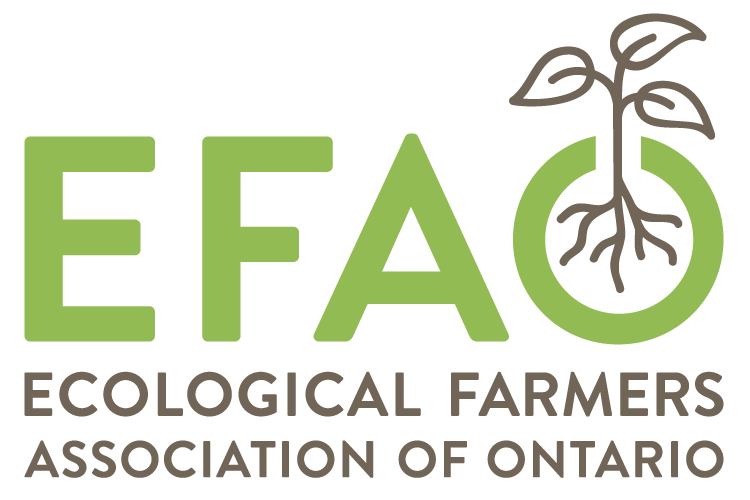 EFAO logo