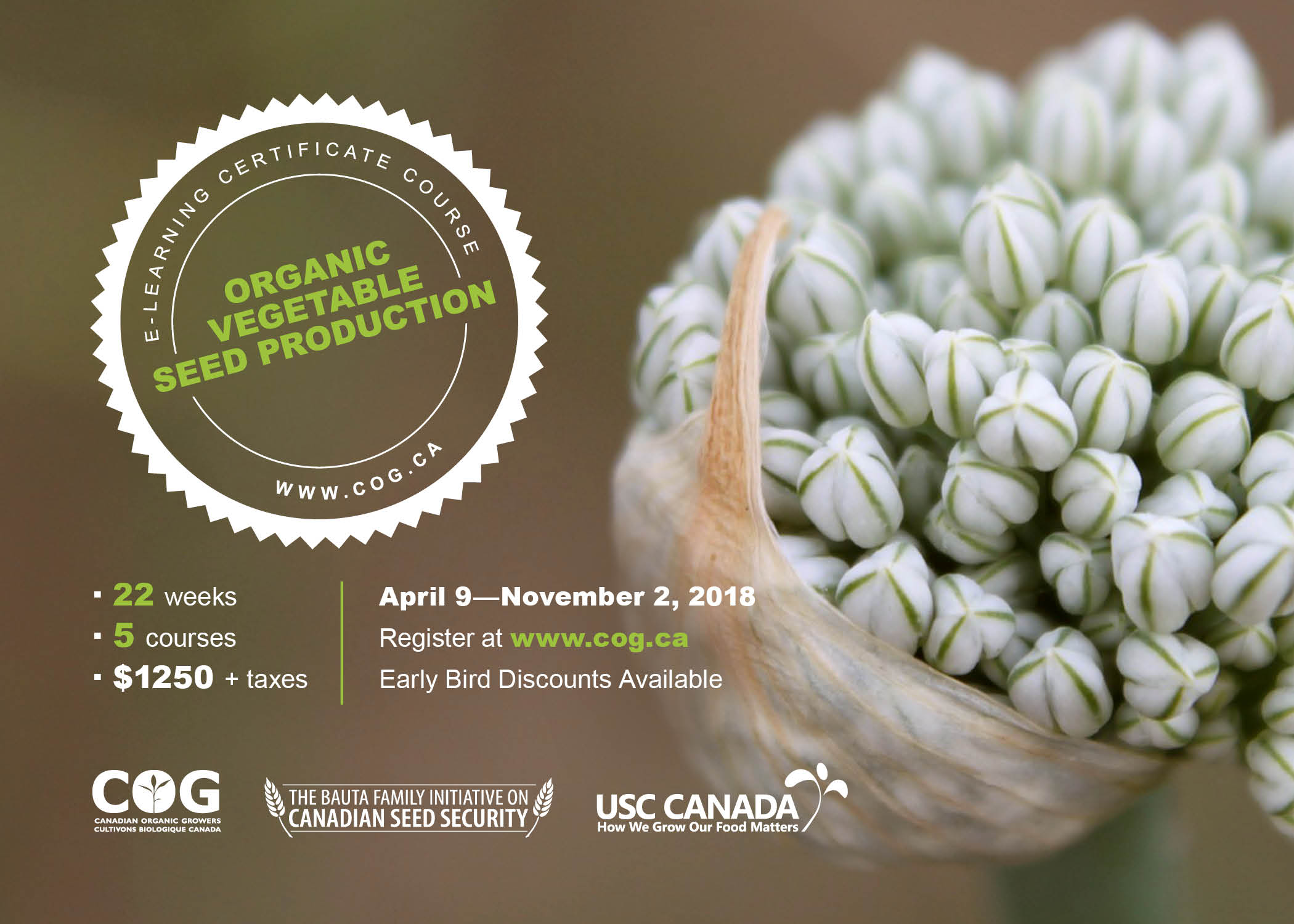 February 2018 for the second year canadian organic growers is excited to open registration for canadas only intermediate level organic vegetable seed production izmirmasajfo
